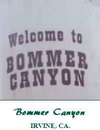 Bommer Canyon Wedding Venue In Irvine California