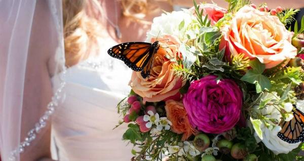 http://www.ocwedding.org Orange County Wedding Planner Maria Lindsay Weddings & Events