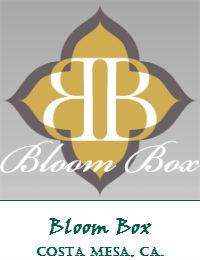 Bloom Box Wedding Flowers In Costa Mesa California