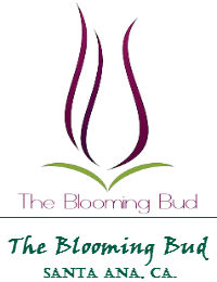 The Blooming Bud Wedding Flowers In Santa Ana California