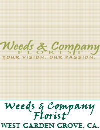 Weeds And Company West Garden Grove Florist