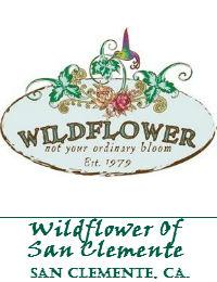 Wildflower Of San Clemente California