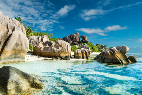 Caribbean Destination Wedding 7