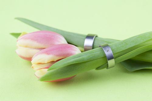 Titanium Wedding Bands On Flowers